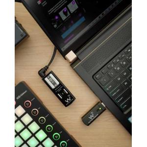 Test Wi AudioLink Ui